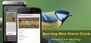 صدای پرندگان برای موبایل