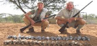 دانلود آموزش شکار انواع پرنده و تکنیکهای هوازنی
