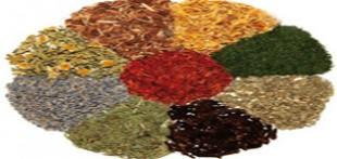 مجموعه عطار باشی و گیاهان دارویی