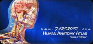 اطلس کامل بدن انسان