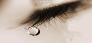 تصویر اشک انسان در زیر میکروسکوپ