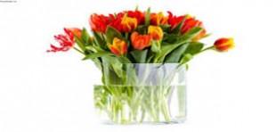 آموزش ساخت گلدان های فانتزی با چوب پنبه