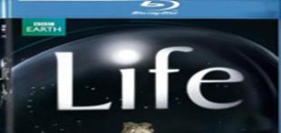 مجموعه حیات وحش بی نظیر با نام زندگي Life