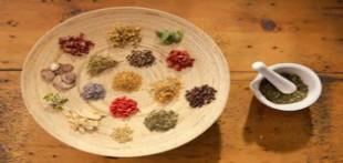 دانلود نرم افزار فارسی اطلس گیاهان ( معرفی کامل گیاهان دارویی ، میوه ها و سبزیجات )
